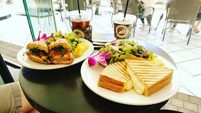 こんにちは昨日の台風から一転して快晴。朝散歩ついでに#islandvintagecoffee で#brunching #lifeinyokohama #lifeofkaren #yokohamalifestyle#暮らしを楽しむ - from Instagram