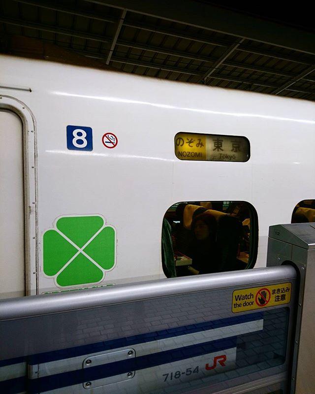 帰り道…何よりも衝撃的だったのは最終の新幹線を取っていたのですが予定より早く帰ることになり乗車変更をしたところ…駅員の方の『席によってはコンセントがないかも知れません』との発言。え?グリーンは全部ついてるよね?と思っておかしいな~なんて旦那様と話ていたら…ホームに上がって旦那様が『700系かも…』(´゚д゚`)エェー!のぞみで700系なんて出張の時も当たらなかったのに?!はい、貴重で貴重な『700系のぞみ』の到着です駅員の方も『N700系』ではなく『700系』だと言ってくれたらさらに変更したのに…(臨時列車なので仕方がないかもです)衝撃が隠せませんΣ(-`Д´-;)だってシートが…フカフカしてないのよ。と衝撃的な帰り道#そうだ暮らしを楽しもう#lifeofkaren #casualandluxe#yokohamalifestyle#lifeinyokohama#暮らしを楽しむ - from Instagram